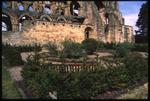 Cloister Garden - Jedburgh Abbey