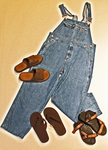Overalls and Flip-flops by Carolyn M. Dalton
